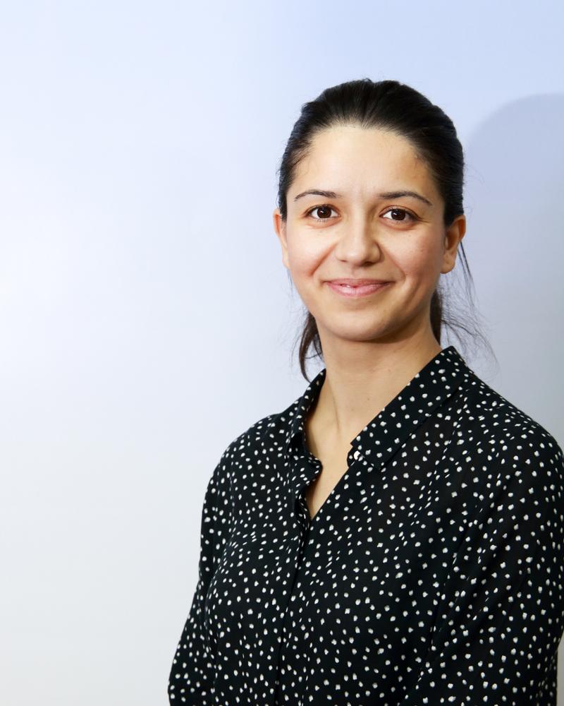 Milena J. Gocić